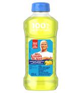 Mr. Clean Multi-Surface Cleaner Summer Citrus