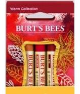Burt's Bees Kiss Warm Colour Kit