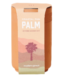 Modern Sprout Terracotta Kit Palm