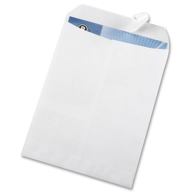 Business Source Self Sealing Catalogue Envelopes