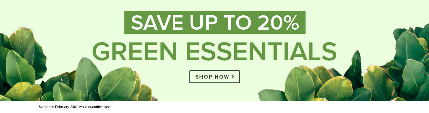 Save Up To 20% on Green Essentials