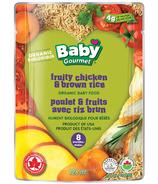 Baby Gourmet Fruity Chicken & Brown Rice Baby Food