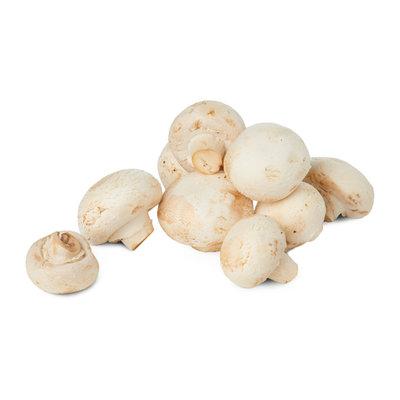 Mushroom - White