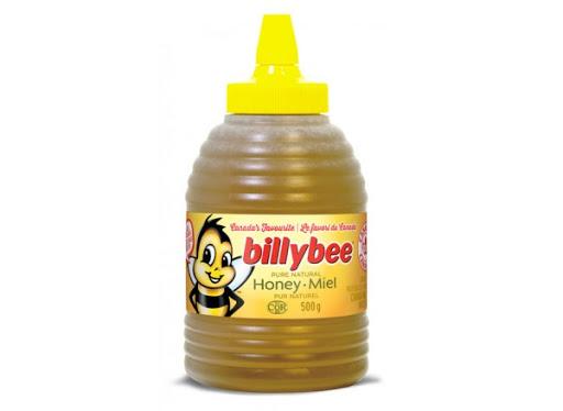 Billy Bee Honey - Squeeze Beehive