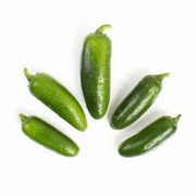 Pepper - Jalapeno
