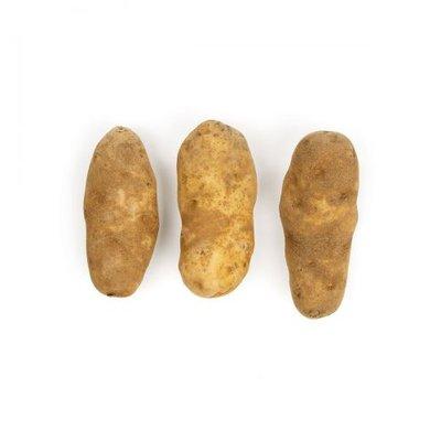 Potato - Baker