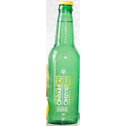 Sparkling Spring Water - Small - Lemon Ginger