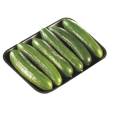 Cucumber - Mini - Baby Seedless - 6 Pack