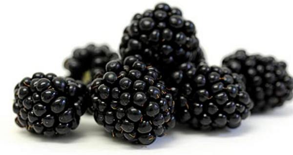 Blackberries - Packaged