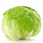 Lettuce - Iceberg