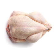 Fresh Halal Whole Chicken