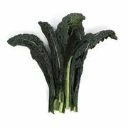Kale - Tuscan (Black)