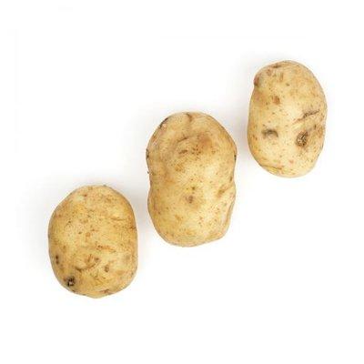 Potato - White