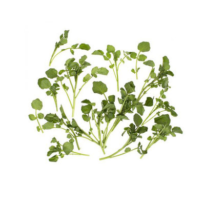 Watercress - (Packaged)