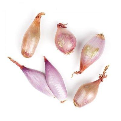 Onion - Shallot (Round)