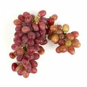Grape - Red Seedless